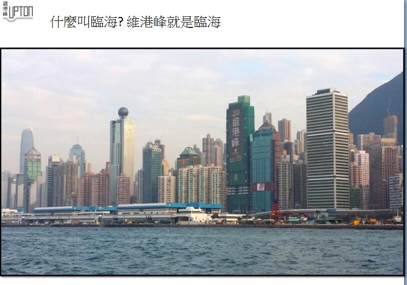 维港峰景观