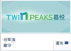 嘉悦(Twin Peaks),香港嘉悦户型图,面积,价格,位置