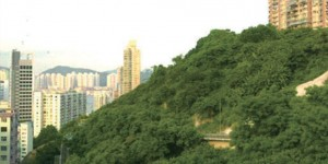 香港港岛区北角陆房产晓峰邻近熙来攘往的英皇道