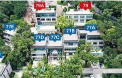 香港山顶道77号别墅Peak Road (14)